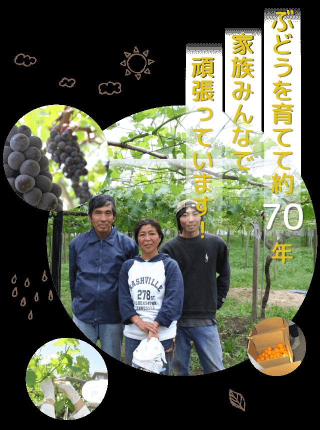 みかんを育てて約90年ぶどうは約70年。家族4代に渡り、愛情を込めて美味しい果物を作り続けています